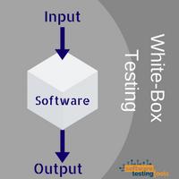 white-box-testing